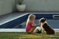 Pies z dzieckiem